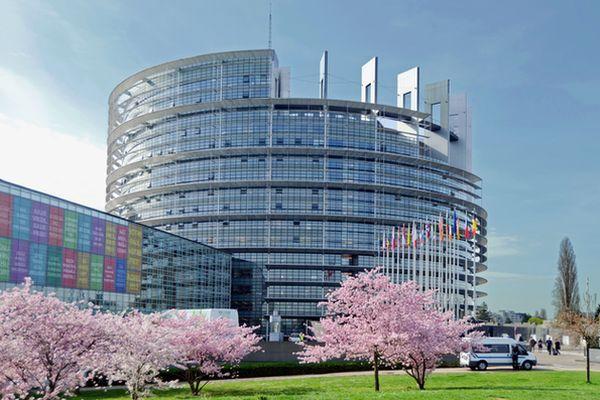 A découvrir à Strasbourg - Photo 2